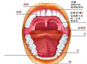 腭舌咽呼吸肌呈对称性弛缓性轻瘫