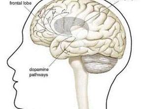 非对称性紧张性颈反射