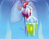 肺性脑病可以打地塞米松吗