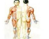 纤维肌痛综合症