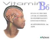 维生素B6依赖综合征