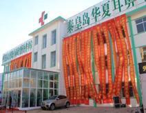 秦皇島華夏耳鼻喉醫院