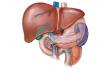 肝癌晚期治疗方法是什么呢?