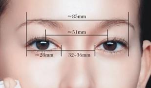 眼裂宽度(约为28mm)