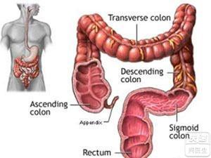 肛门手术消毒范围