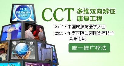 CCT多维双向辨证康复工程