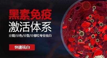 黑色素免疫激活体系