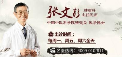 中国中医科学院张文彭